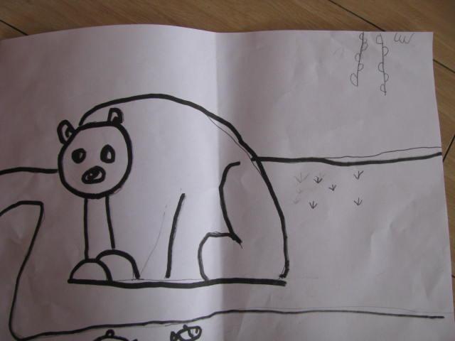 简笔画 棕熊