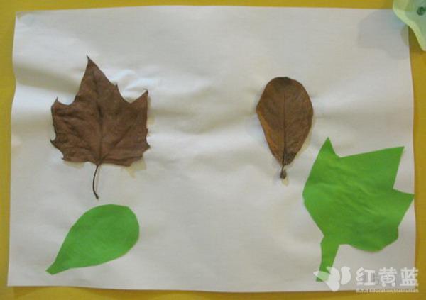 语言课——飞舞的树叶