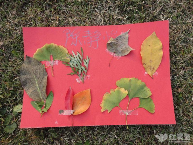 寻找秋天的作品 2011年