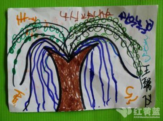 柳树发芽了! _ 红黄蓝 早教 早教中心