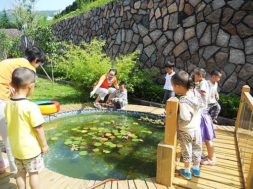幼儿园的小池塘