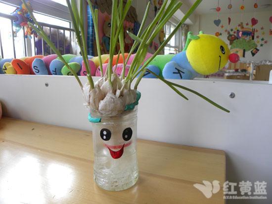 宝宝自制花盆 _ 红黄蓝|早教|早教中心