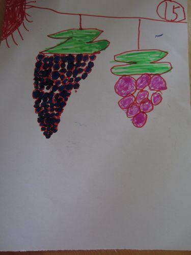 作品展示 葡萄