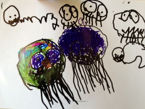 黄班,齐齐的可爱水母