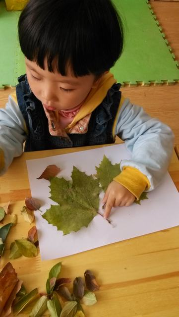树叶拼贴画