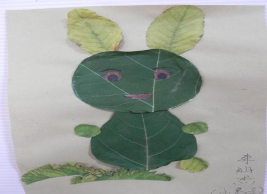 树叶画 小兔子