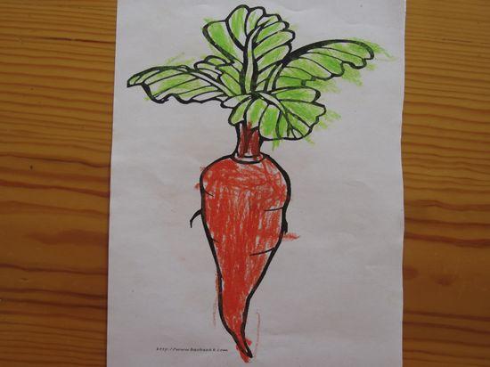 雅雅的作品-萝卜萝卜