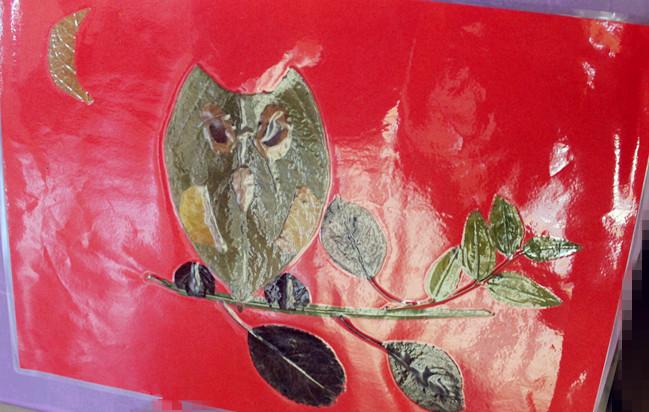 树叶贴画 猫头鹰