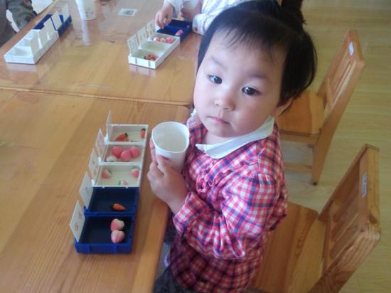 喂小动物吃食物 _ 红黄蓝|早教|早教中心