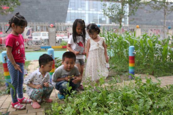 夏天的风景幼儿学画画