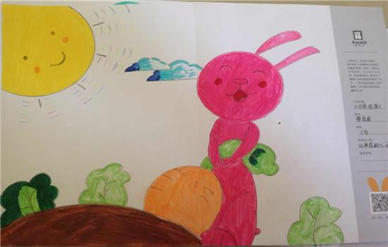 小兔子 拔萝卜 简笔画